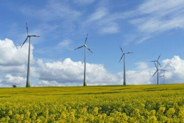 Clima y enfermedad: detrás de todo hay energía, pero las empresas reman en contra