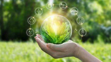 Convertirse a «verde» es la única manera de reconstruir la economía post-Covid