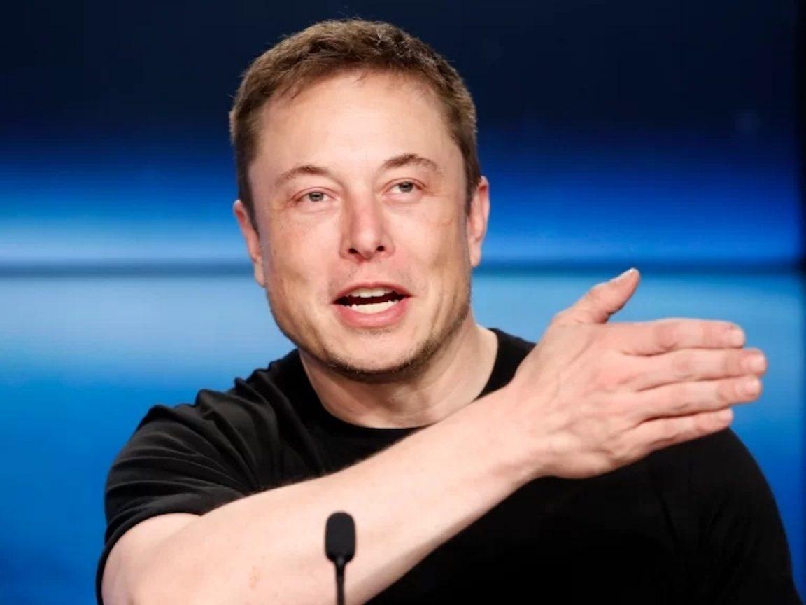 Elon Musk aumento valor de Hamster