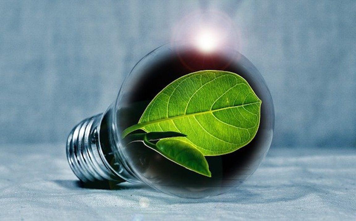 cero emisiones netas 2050
