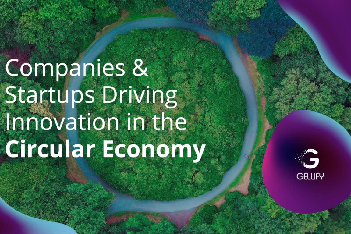 GELLIFY el informe sobre la economia circular